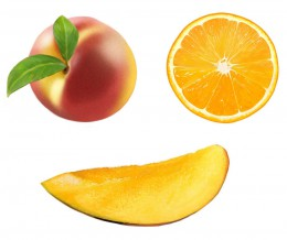 FRUIT_illu